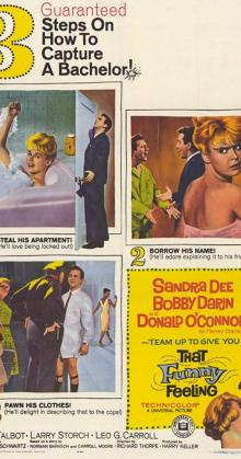 That Funny Feeling (1965)