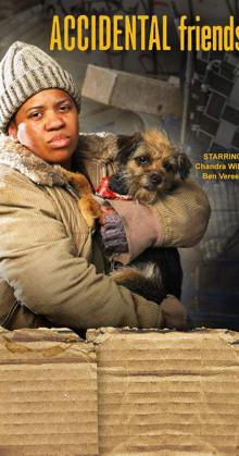Accidental Friendship (2008)