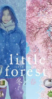 Little Forest Winter spring (2015)