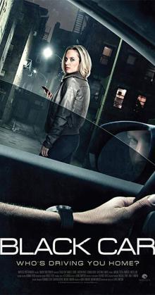 The Wrong Car (2016)