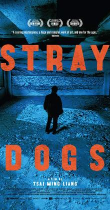 Stray Dogs (2013)