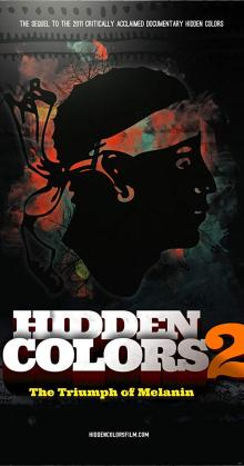 Hidden Colors 2 (2012)