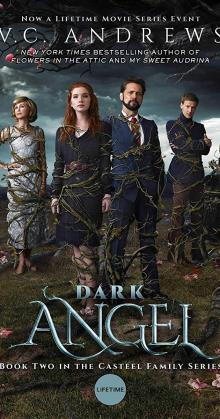 Dark Angel (2019)