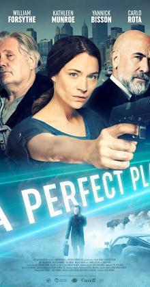 A Perfect Plan-(2020)