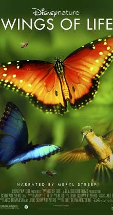 Disneynature Wings Of Life (2011)