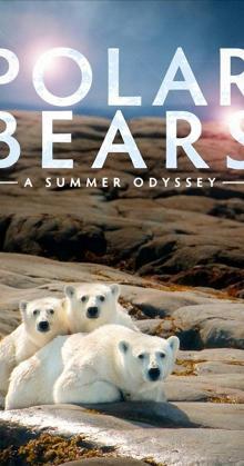 Polar Bears: A Summer Odyssey (2012)