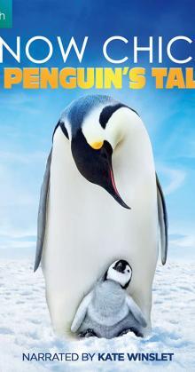 Snow Chick A Penguins Tale (2015)