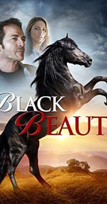 Black Beauty (2015)