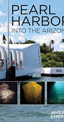 Pearl Harbor Into the Arizona (2016)