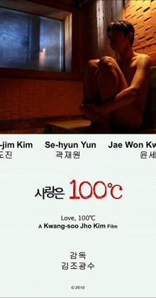 Love 100 C (2010)