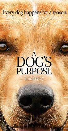 A Dogs Purpose (2017)